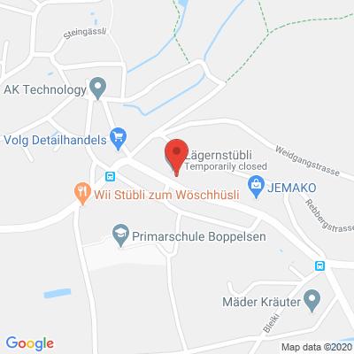 Regensbergstrasse 3, 8113, Boppelsen