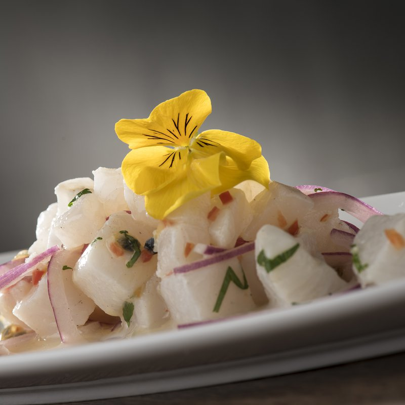 PapaCeviche_CevicheMamaTropical