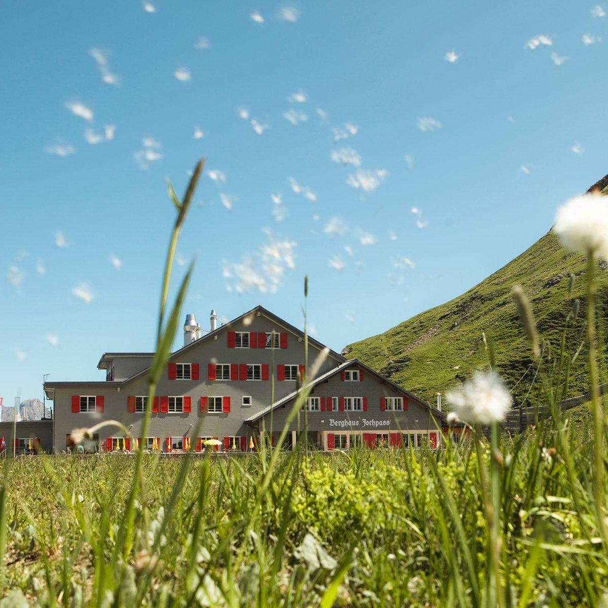 Sommerwiese mit Haus