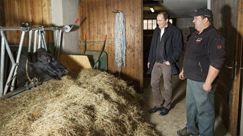 Persönliche Kontrolle vor Ort über Rinderhaltung und Reservation der besten Rinder