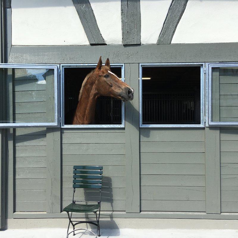 Neue Pferdeboxen
