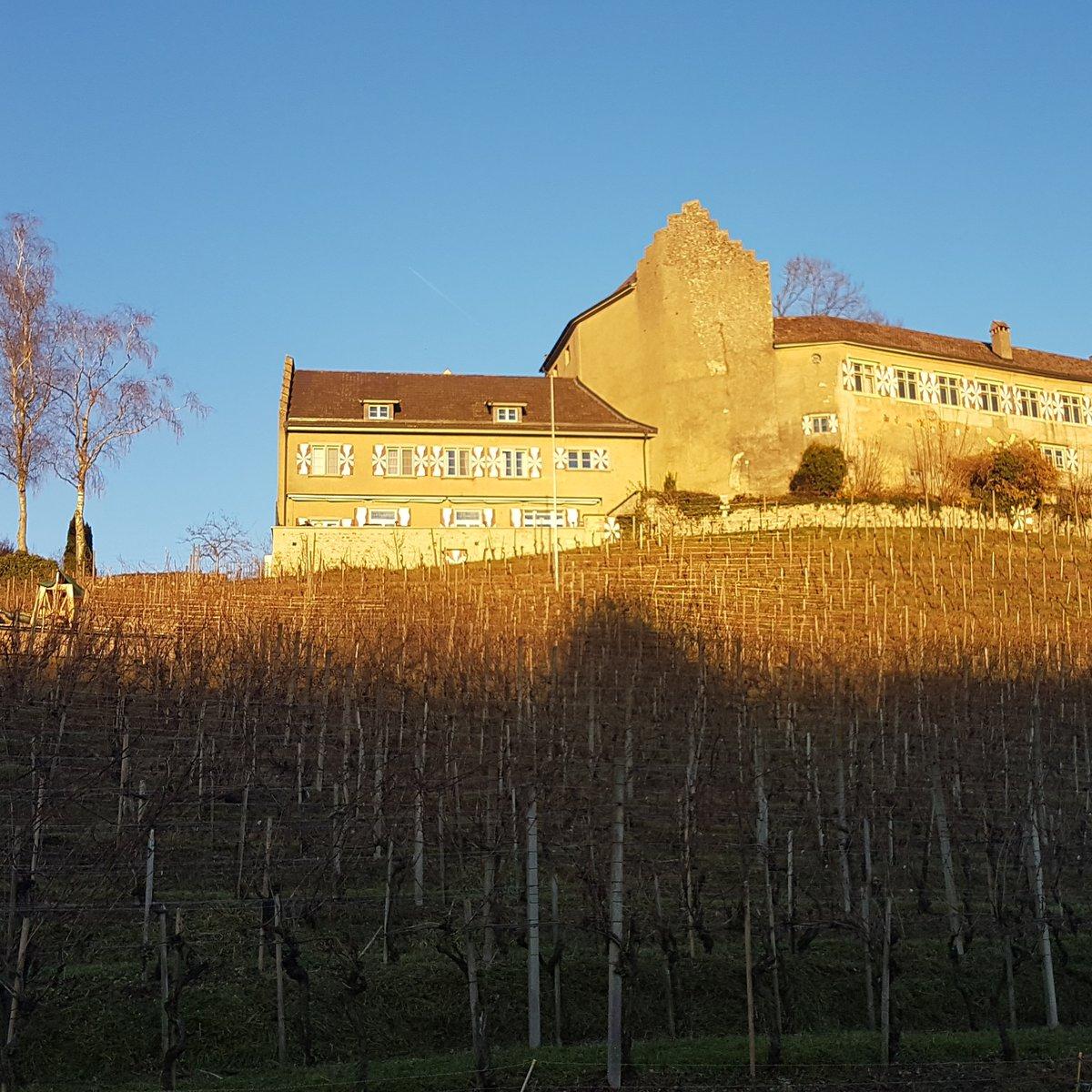 Schloss Rebberg
