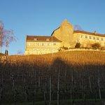 Restaurant Schloss Schwandegg