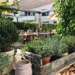 Restaurant Gartenstadt