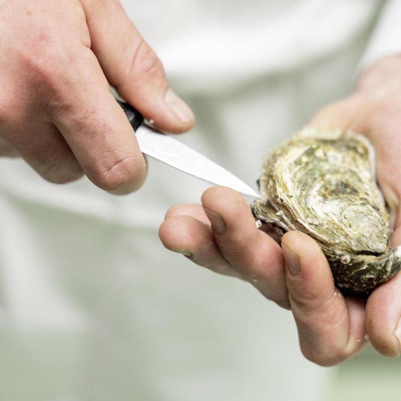 Brasserie Lok, Austern