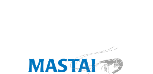 Mastai-logo-sunset-party